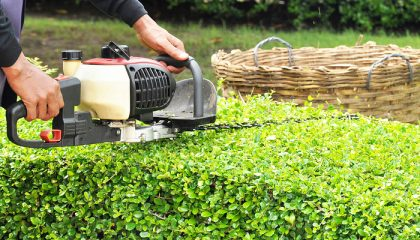 Grünanlagen- und Rasenpflege